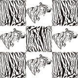 Modelos del tigre para las materias textiles y el papel pintado ilustración del vector