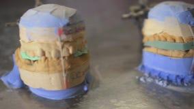 Modelos dentais na tabela, conceito da gipsita do dente doente filme