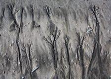 Modelos en arena de la playa imágenes de archivo libres de regalías