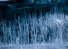 Modelos en el hielo Fotos de archivo