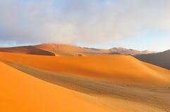 Modelos en la arena del Namib Foto de archivo libre de regalías