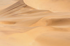 Modelos en la arena del Namib 3 Imagen de archivo