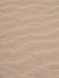 Modelos en la arena a utilizar como fondo fotografía de archivo libre de regalías