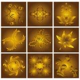 Modelos florales de oro Imágenes de archivo libres de regalías