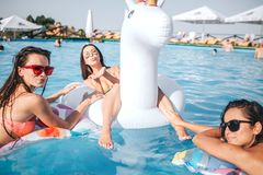 Modelos imponentes que nadan en los flotadores en piscina Miran y presentan en cámara La mujer en centro envía besos a la cámara  imágenes de archivo libres de regalías