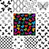 Modelos inconsútiles determinados con las mariposas Imágenes de archivo libres de regalías