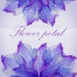 Modelos redondos florales de la acuarela Fotografía de archivo