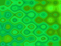 Modelos verdes Imagen de archivo libre de regalías