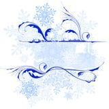 Modelos y copos de nieve florales libre illustration