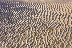 Modelos y textura de la ondulación de la arena Fotos de archivo libres de regalías