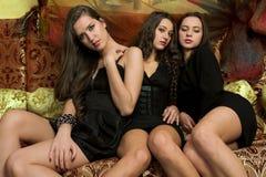 Models. Group of models in a black dresses stock images