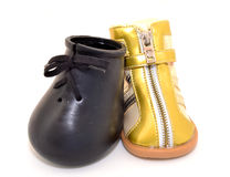 Models of dog boot Stock Photography