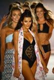 Models walk runway finale in designer swim apparel during the Frankies Bikinis fashion show. MIAMI, FL - JULY 18: Models walk runway finale in designer swim stock photo