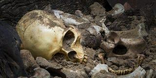 Modelschedel van mens en van de beenderenvorm kuil met donker licht De ruimte van het exemplaar stock afbeelding