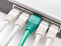 Modem connected to the network. Network cables connected to a router or modem Stock Photos