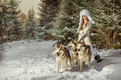 Modeporträt der schönen Frau Lizenzfreies Stockfoto