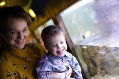 Moder med sonen som ser fiskar Royaltyfri Foto