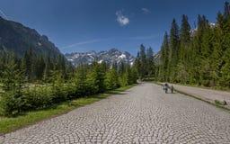 Moder och barn som går på vägen i bergdalen Arkivfoto