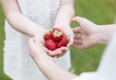 Moder och dotter som visar en grupp av jordgubbar Arkivbilder