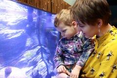 Moder och son som ser akvariet Arkivfoton
