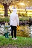 Moder- och sonanseende nära dammet arkivfoton