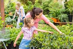 Moderdottern som väljer blommor i trädgård, shoppar arkivbild