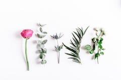 Moderiktig design med blommamodellen på vit åtlöje för bästa sikt för bakgrund upp royaltyfri foto