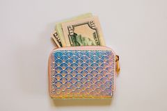 Moderiktig holographic handväska med dollarsedlar på vit bakgrund royaltyfri foto
