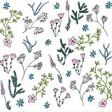 Moderiktig ljus sommar som blommar många blommor för trädgårdöversikts- och handmålning sort av blom- i sömlös modell vektor illustrationer