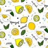 Moderiktig sommargarnering för vektor Citronfruktteckning med mintkaramellsidor Ny saftig naturlig vegetarisk söt textur royaltyfri illustrationer