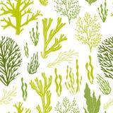 Moderiktig sommarhavsväxtdesign Royaltyfri Bild