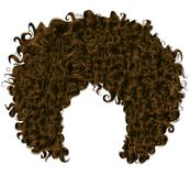 Moderiktigt lockigt hår för mörk brunt Realistisk 3d sfäriska hår vektor illustrationer