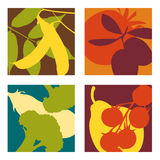 Modern abstract  fruit and vegetable designs. 4 coordinating  fruit and vegetable designs Stock Photos