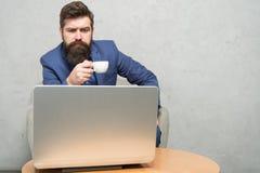 Modern aff?rsman Aff?rsman Work Laptop Reagerande aff?rsemail surfa f?r internet Projektchef digitalt royaltyfri fotografi