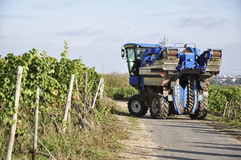 Modern Agricultur, wine harvesting Stock Photos