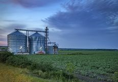 Free Modern Agricultural Silo. Royalty Free Stock Images - 130988979