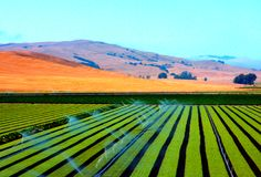 Free Modern And Rectangle Lines In Agriculture Stock Photos - 118187653