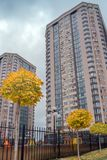 A modern house with a neat adjoining territory and a luscious yellow maple trees. veiw from below. Modern apartment building with a neat adjoining territory and royalty free stock photo
