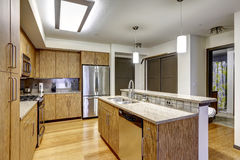 Modern apartment interior. KItchen with granite tops Stock Photo