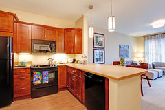 Modern apartment interior. Open floor plan royalty free stock photos