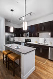 Modern Apartment Kitchen. Dark wood cabinets accent this modern home kitchen remodel. Stainless steel appliances and fixtures with light colored counter tops and Royalty Free Stock Photos