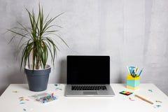 Modern arbetstabell med den gröna växten i grå kruka- och datorbärbar dator royaltyfri fotografi