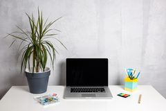 Modern arbetstabell med den gröna växten i grå kruka- och datorbärbar dator royaltyfria foton
