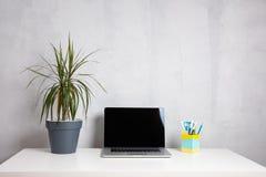Modern arbetstabell med den gröna växten i grå kruka- och datorbärbar dator arkivfoto