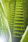 Modern architecture. Abstract of modern architrecture based on natural shapes royalty free stock image