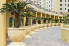 Modern architecture and construction, landscape design, interior view of the courtyard with palm trees. Scenic landscape with pers Royalty Free Stock Image