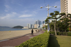 Modern architecture Haeundae beach busan korea Royalty Free Stock Photo