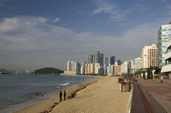 Modern architecture Haeundae beach morning sun busan korea Stock Photography