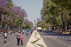 Modern architecture, parks and building in the centre of Mexico city. Modern architecture, street, parks and building in the centre of Mexico city Stock Image