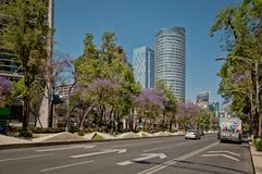 Modern architecture, parks and building in the centre of Mexico city. Modern architecture, street, parks and building in the centre of Mexico city Royalty Free Stock Photography